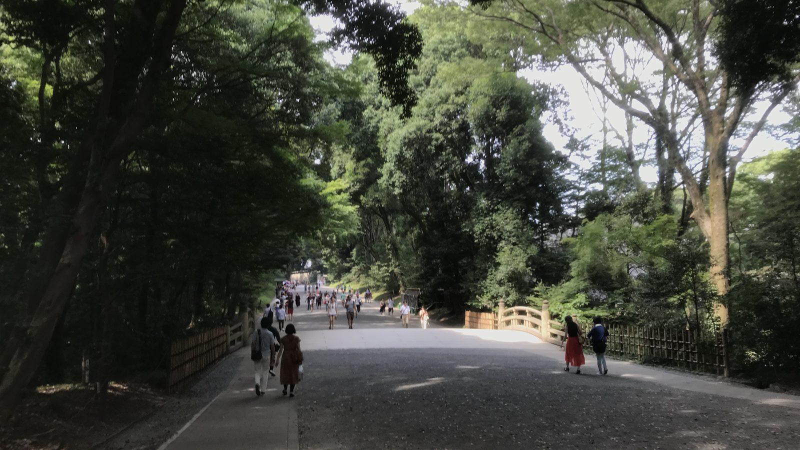 明治神宮への道
