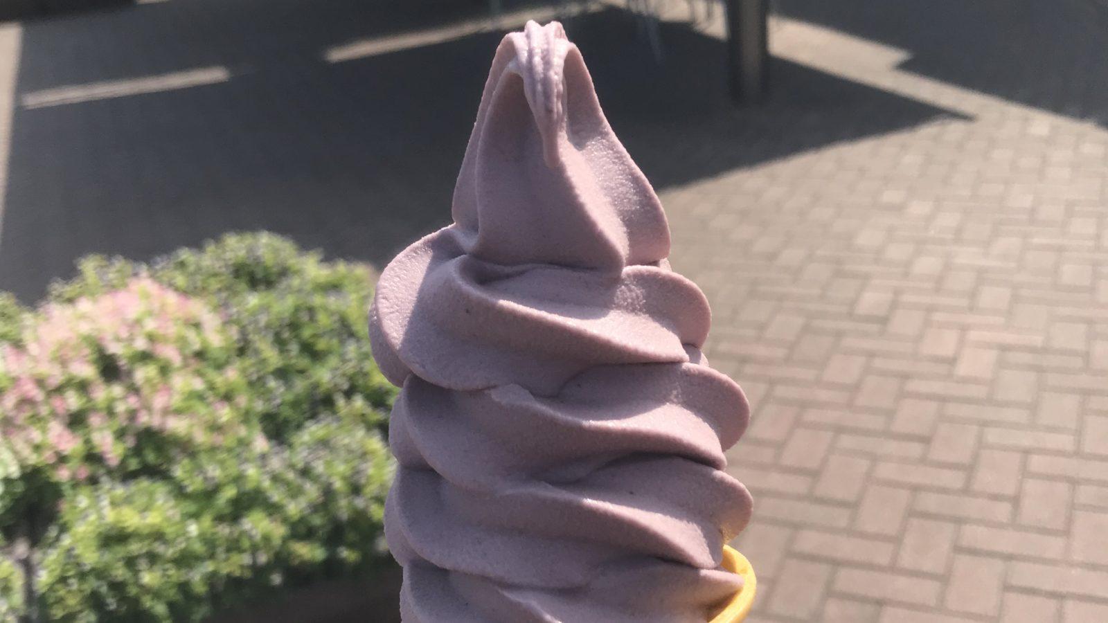 二回目の休憩で食べた「ブルーベリーアイス」