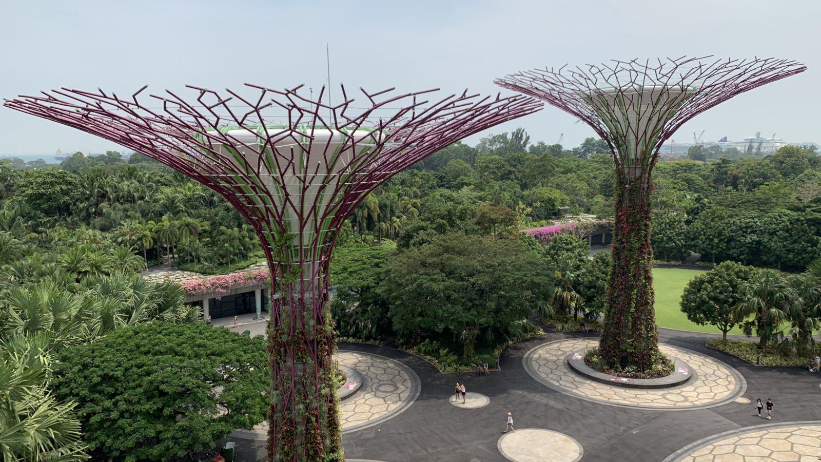 シンガポール-ガーデンズ・バイ・ザ・ベイ